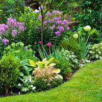 Landscaping Brixton