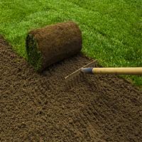 Lawn Repair Brixton